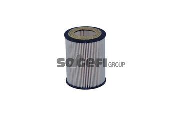 Filtro olio tecnocar op255 hyundai for Filtro abitacolo hyundai elantra