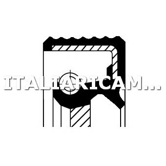 1 PARAOLIO RIPARTITORE DI COPPIA ANTERIORE DX CORTECO BMW