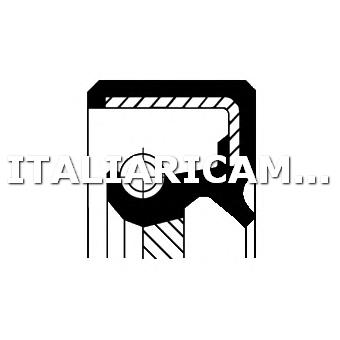 1 PARAOLIO CAMBIO MANUALE CORTECO AUDI, FORD