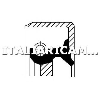 1 PARAOLIO ALBERO PRIMARIO (POMPA OLIO)  DX CORTECO