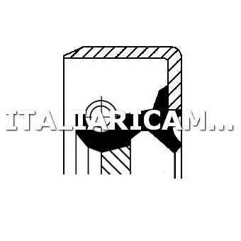 1 PARAOLIO ALBERO MOTORE CORTECO SEAT