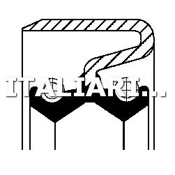 1 ANELLO TENUTA FUSO A SNODO ANTERIORE CORTECO IVECO