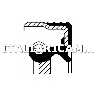 1 PARAOLIO ALBERO A CAMME DX CORTECO ALFA ROMEO, AUTOBIANCHI, CITROEN, FIAT, INNOCENTI, LANCIA, PEUGEOT