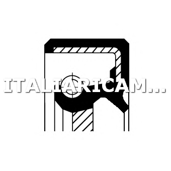 1 PARAOLIO RIPARTITORE DI COPPIA ANTERIORE CORTECO NISSAN