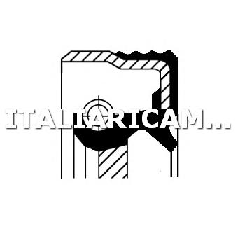 1 PARAOLIO CAMBIO AUTOMATICO DX CORTECO AUDI