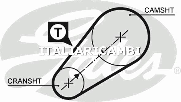 1 CINGHIA DISTRIBUZIONE  GATES FIAT, SEAT, FSO